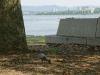膳所城跡公園から琵琶湖(南側)
