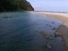 メヒルギ自生地そばの海岸